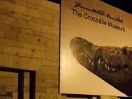 Auch ein Opfer schwerer Sandstürme: Das Krokodilmuseum in Kom Ombo