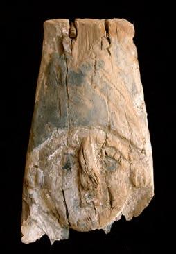 Das Gesicht von einem Sarkophag aus dem 2. Jh. n. Chr.  Francesco Tiradritti