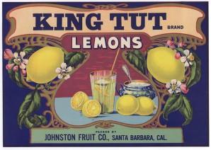 Hmmm, King Tut Zitronen  © Brier Remner Collection