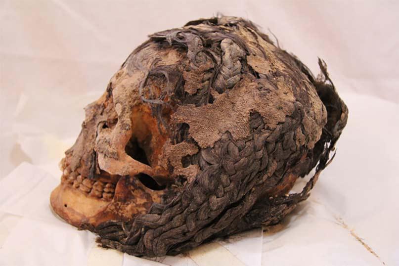 Viele Haarextensions trug auch diese Frau aus Amarna. Auf den Haaren sieht man noch die Überreste eines Tuches, das eventuell als Schädelkappe verwendet wurde Foto: Jolanda Bos,  Lonneke Beukenholdt