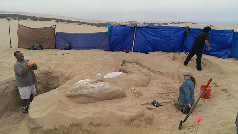 """Eine gut erhaltene Sphinx aus """"Die Zehn Gebote"""" Foto: Applied EarthWorks. Inc."""