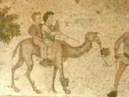Jungen auf einem Kamel. Mosaik aus der Spätantike, frühes 6. Jh. n. Chr. Great Palace Mosaic Museum, Istanbul Foto: Reidar Aasgaard