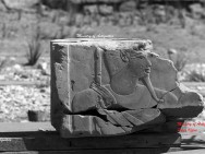 Das gestohlene Relief aus der 18. Dynastie Bild: MSA