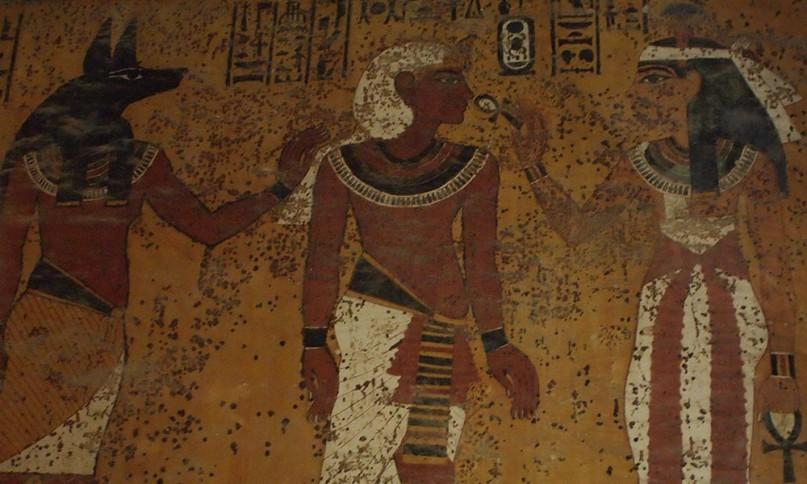 Die Schimmelflecken aus der Antike könnten Reeves Theorie widerlegen