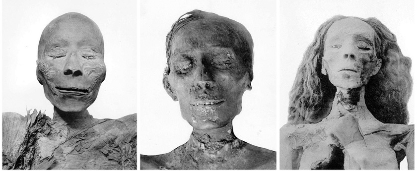 "Die Mumien von Thutmosis I., Thutmosis IV. und der ""Älteren Dame"" aus KV35. Fotos: G.E. Smith, The Royal Mummies (1912), Copyright expired"