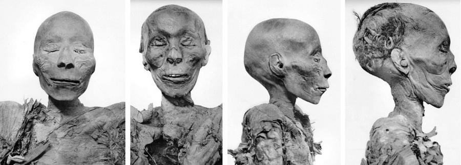 Die Mumien, die bisher als Thutmosis I. (li) und II. (re) gelistet wurden. Fotos: G. Elliot Smith 1912, Copyright expired