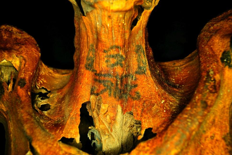 Zwei Paviane rechts und links neben einem Udjat-Auge (oben). Foto: Anne Austin