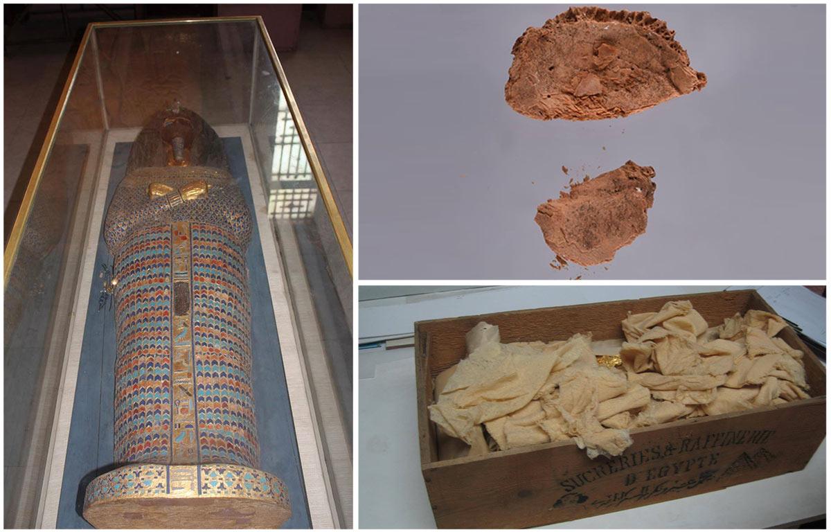 Der Sarkophag aus KV55, Teile eines menschlichen Schädels und die Holzbox mit den Goldfragmenten. Fotos: MSA