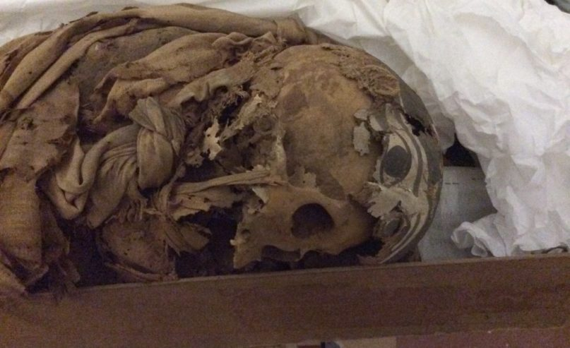 Kopf der Mumie Khepeset, Ägypt. Museum Turin, Foto: Raffaella Bianucci