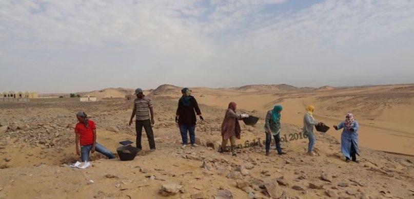 Archäologen der Aswan Field School bei der Arbeit. Bild: MSA